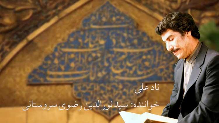 سید نورالدین رضوی سروستانی